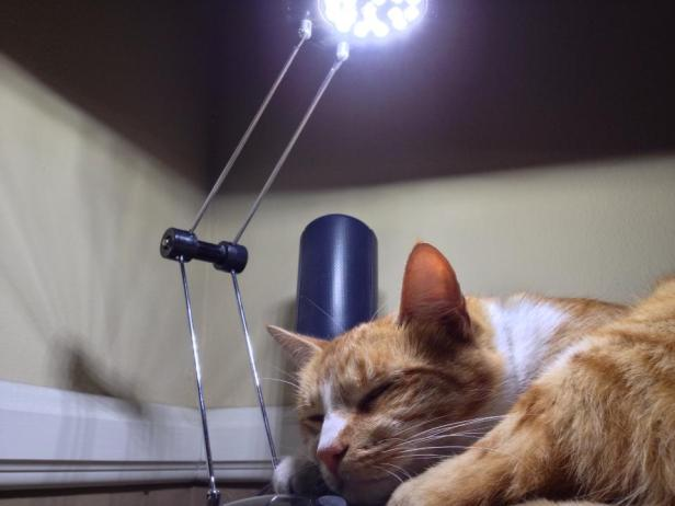 Lionheart lamp